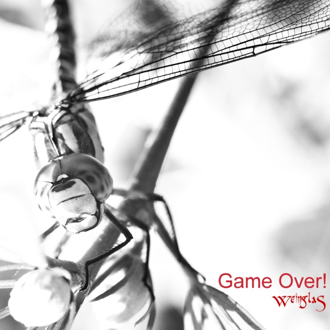Weinglas - Game Over!