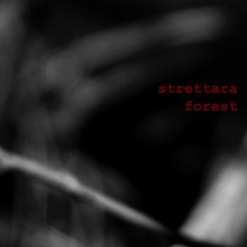 Strettara - Forest
