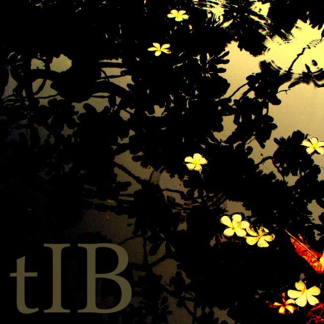 tIB - Impressions, Pixelated